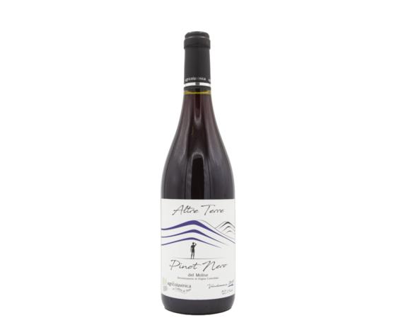 Pinot nero del molise 2019 679x1024