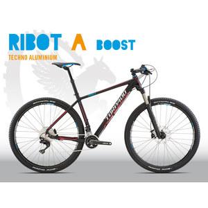 RIBOT_A