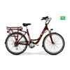 Crystal bordeaux biciclettezecchini