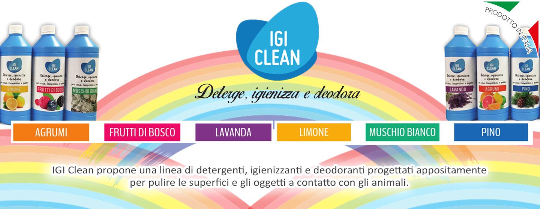 Igiclean seconda bozza