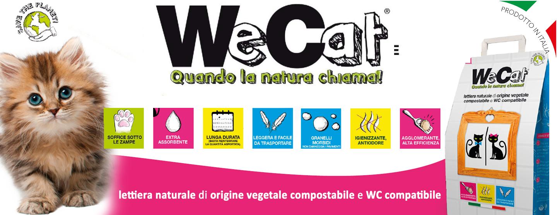 Wecat banner