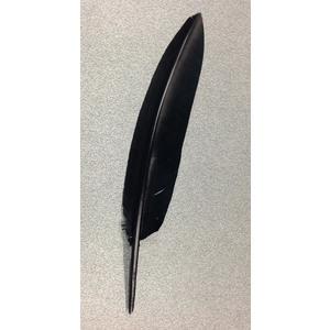 Penna corvo nera per cappello alpini