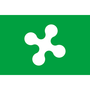 Bandiera Lombardia 70N